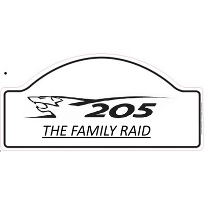 team-205-the-family-raid